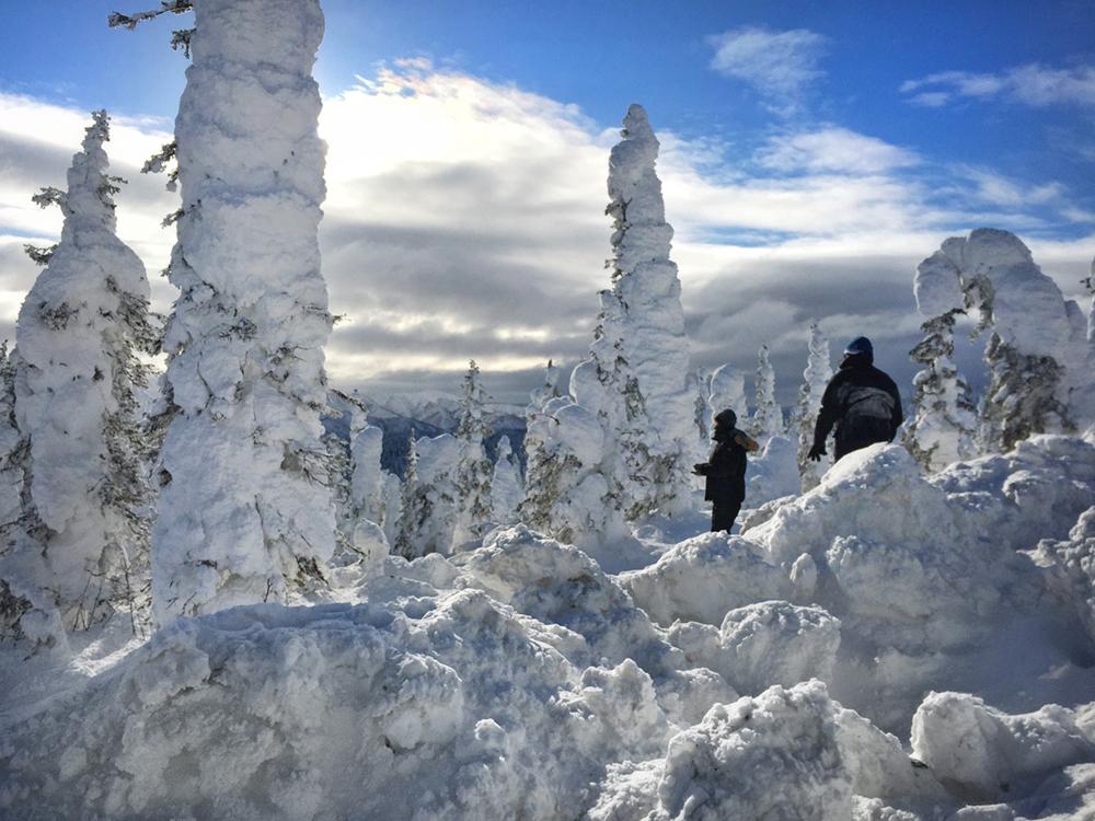 Arctic Crust