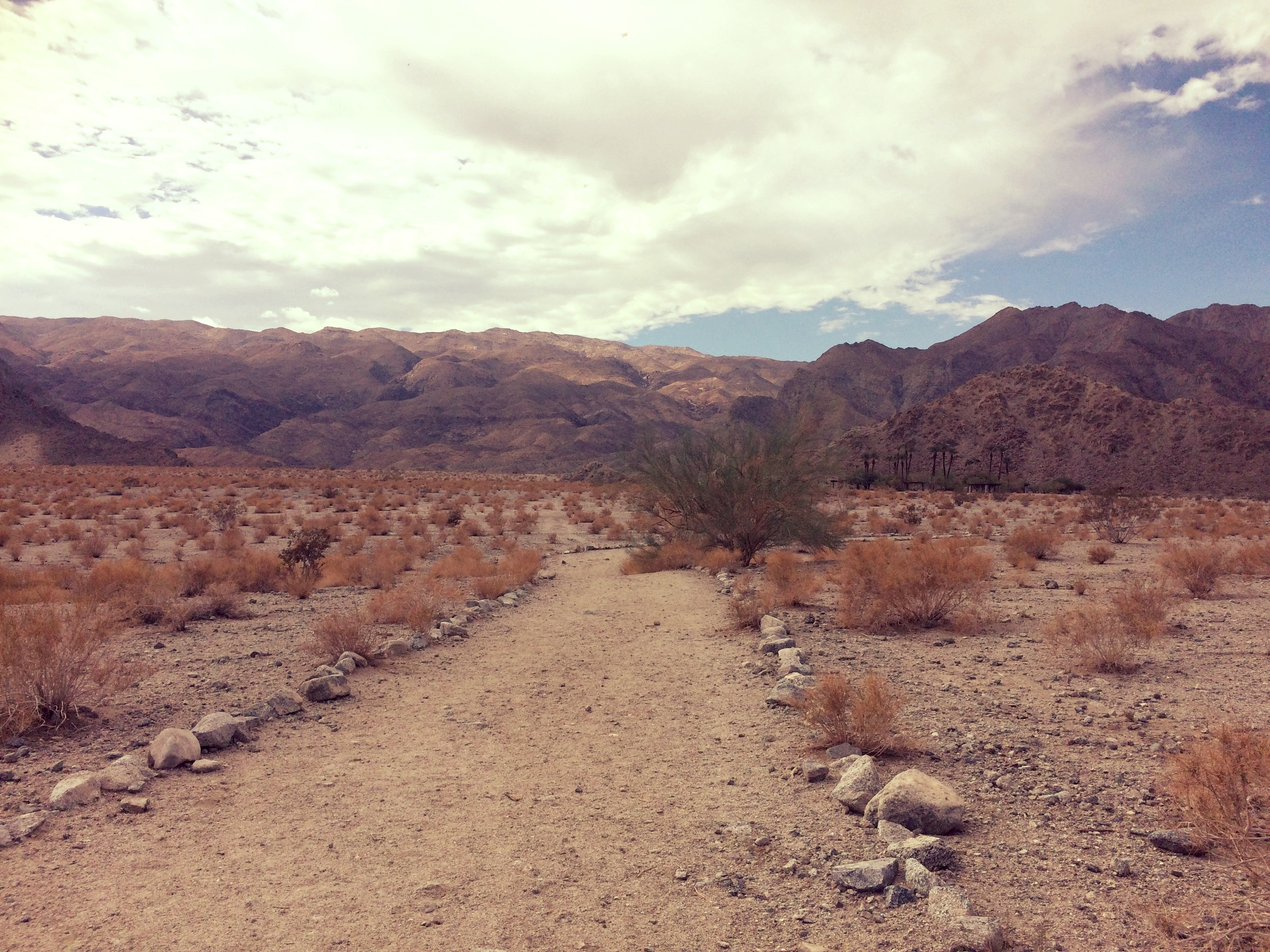 La Quinta Cove Trails CA.jpg