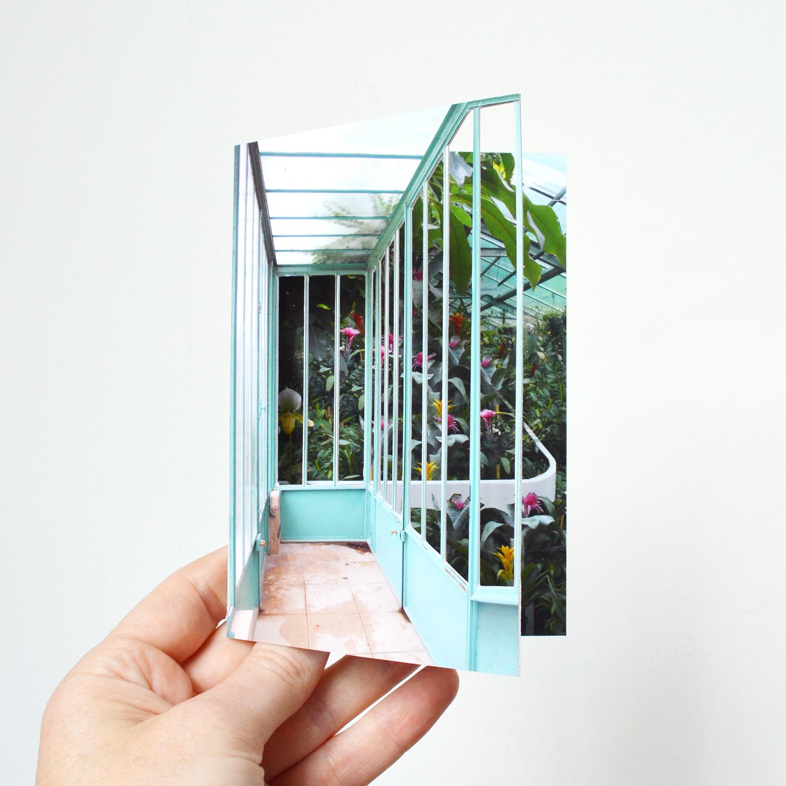 window_tropicalenclosure.jpg