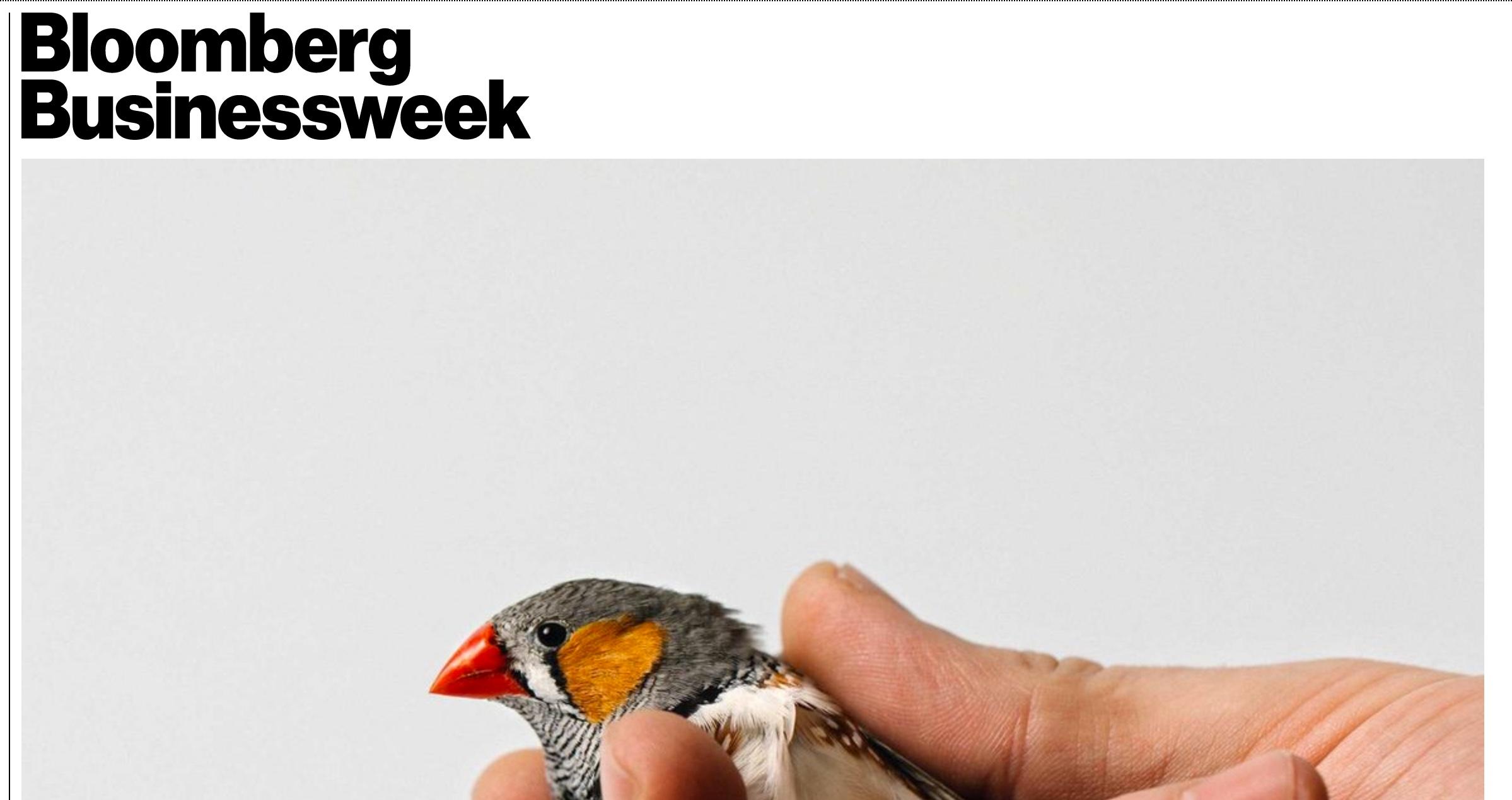 bloomberg businessweek.jpeg
