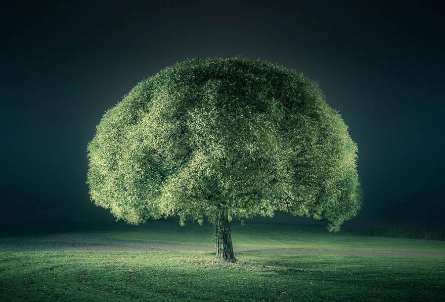 Stunning-night-landscapes-photographed-by-Mikko-Lagerstedt8.jpg