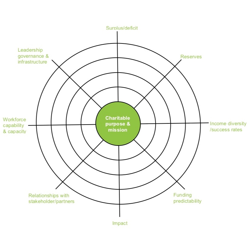 Charity+sustainability+assessment.jpg