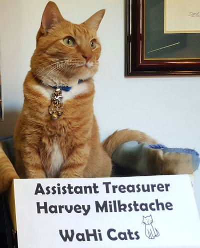 Harvey is looking forward to processing your donation.
