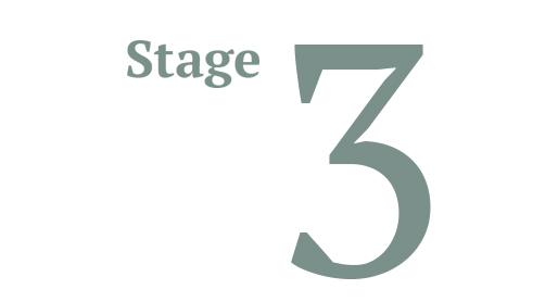 STAGE3.jpg