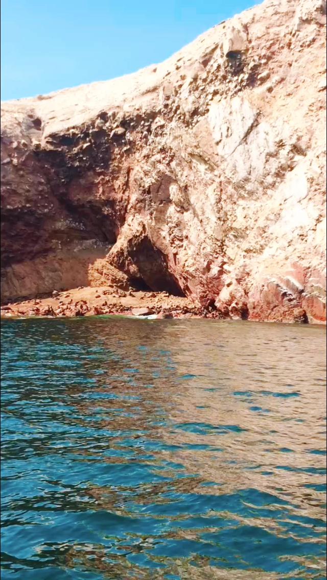 Lobos Marinos en Islas Ballestas, Paracas #paracas #islasballestas