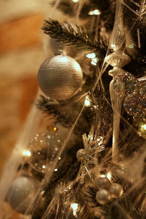 christmas-2646289_960_720.jpg