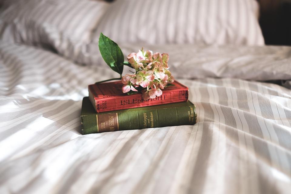 books-2619265_960_720.jpg