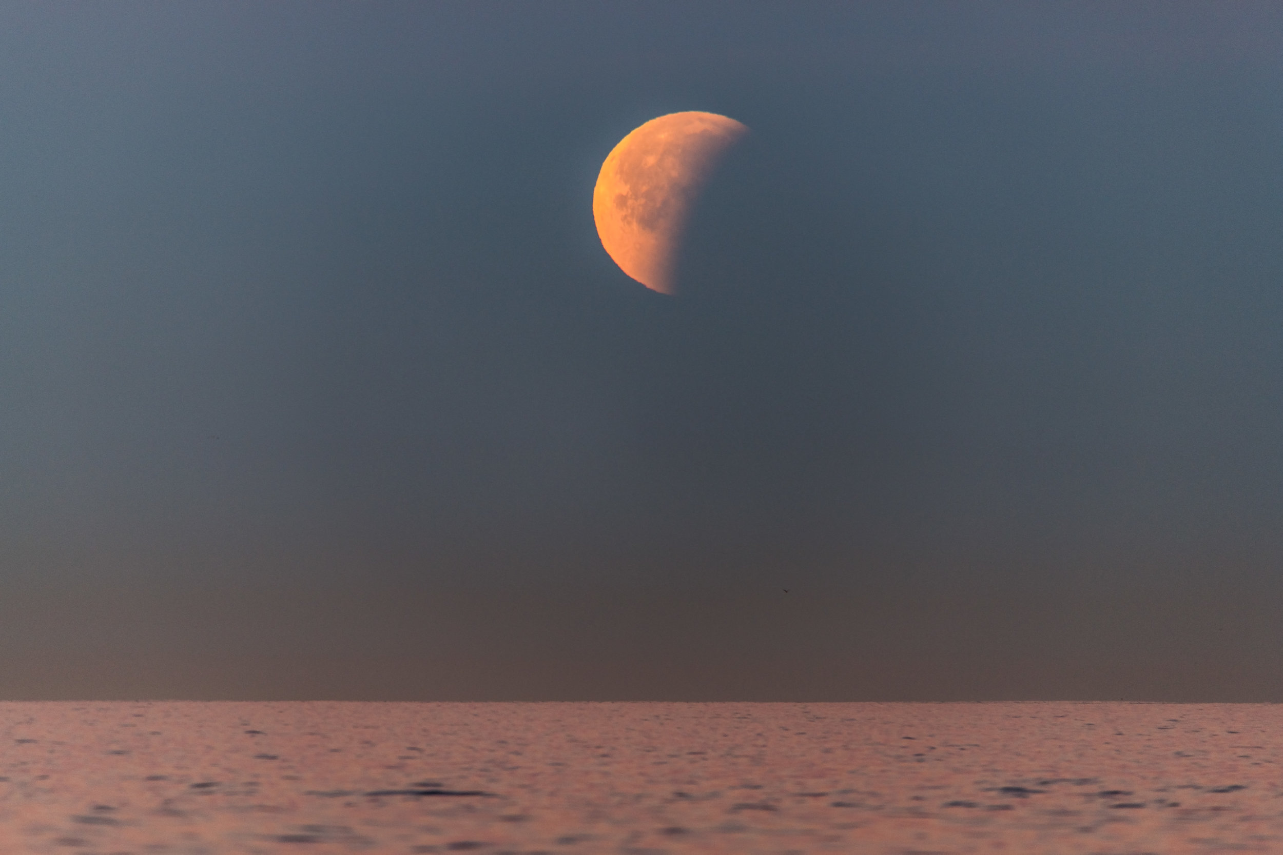 The eclipsing moon getting ready to set over The Pacific Ocean.
