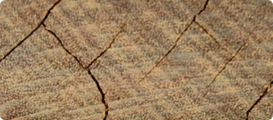 UNTREATED END GRAIN