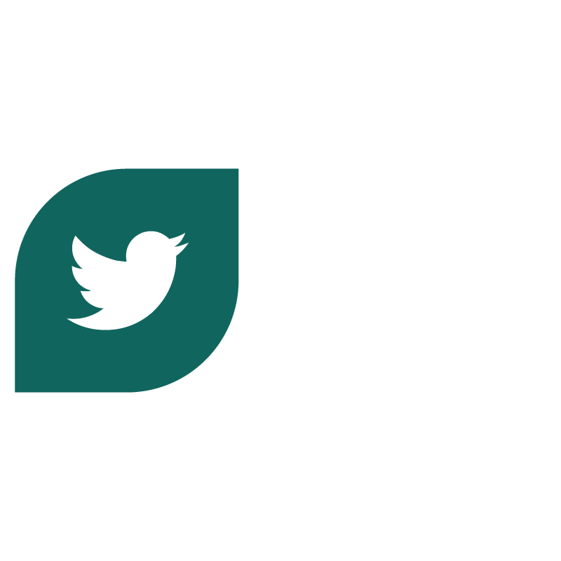 twitter-icon_small.png