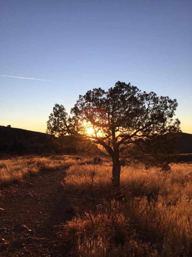 Desert 1.jpg
