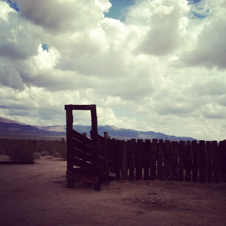 Desert 3.jpeg