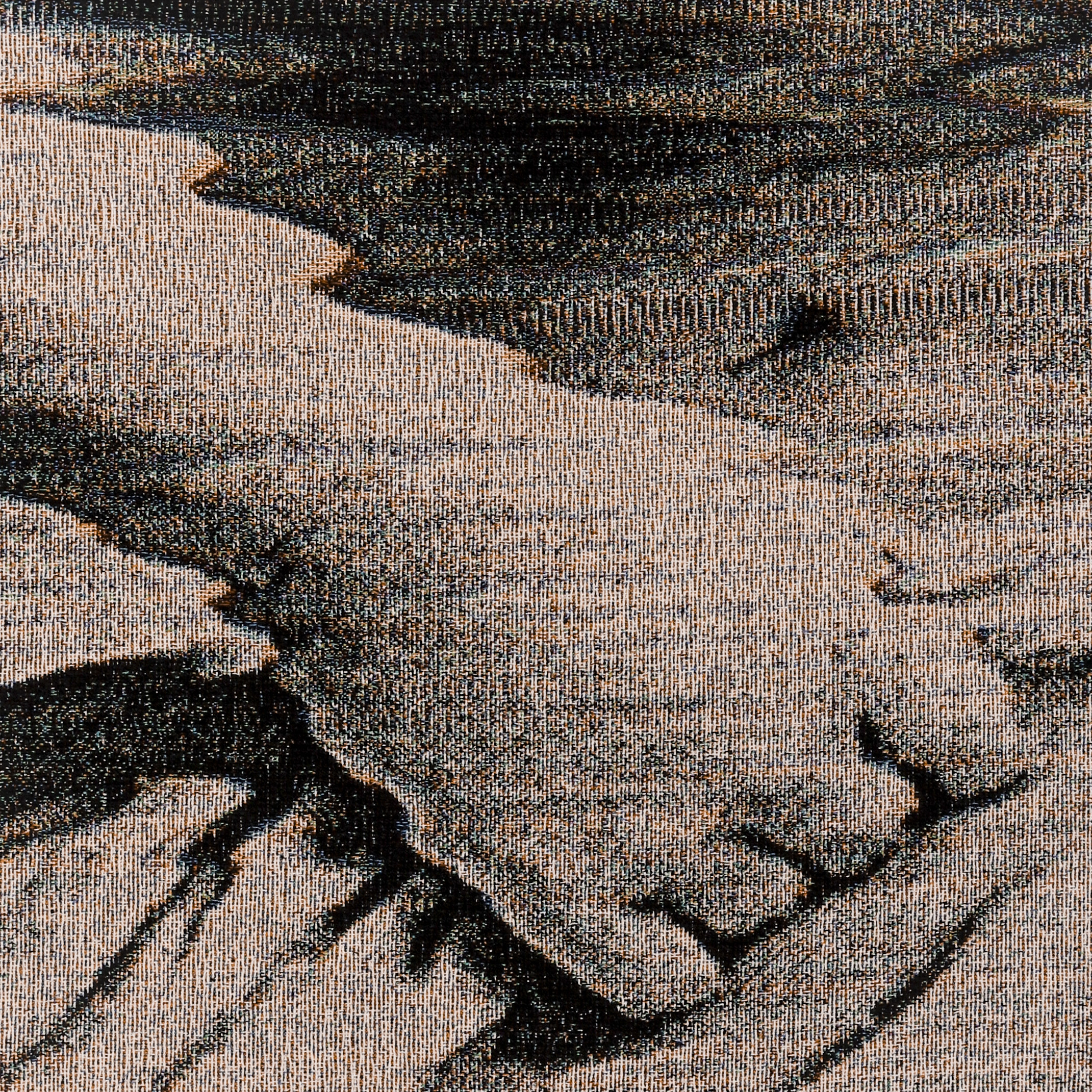 Henrikson_Brett_2019_Textile Detail No.2.jpg