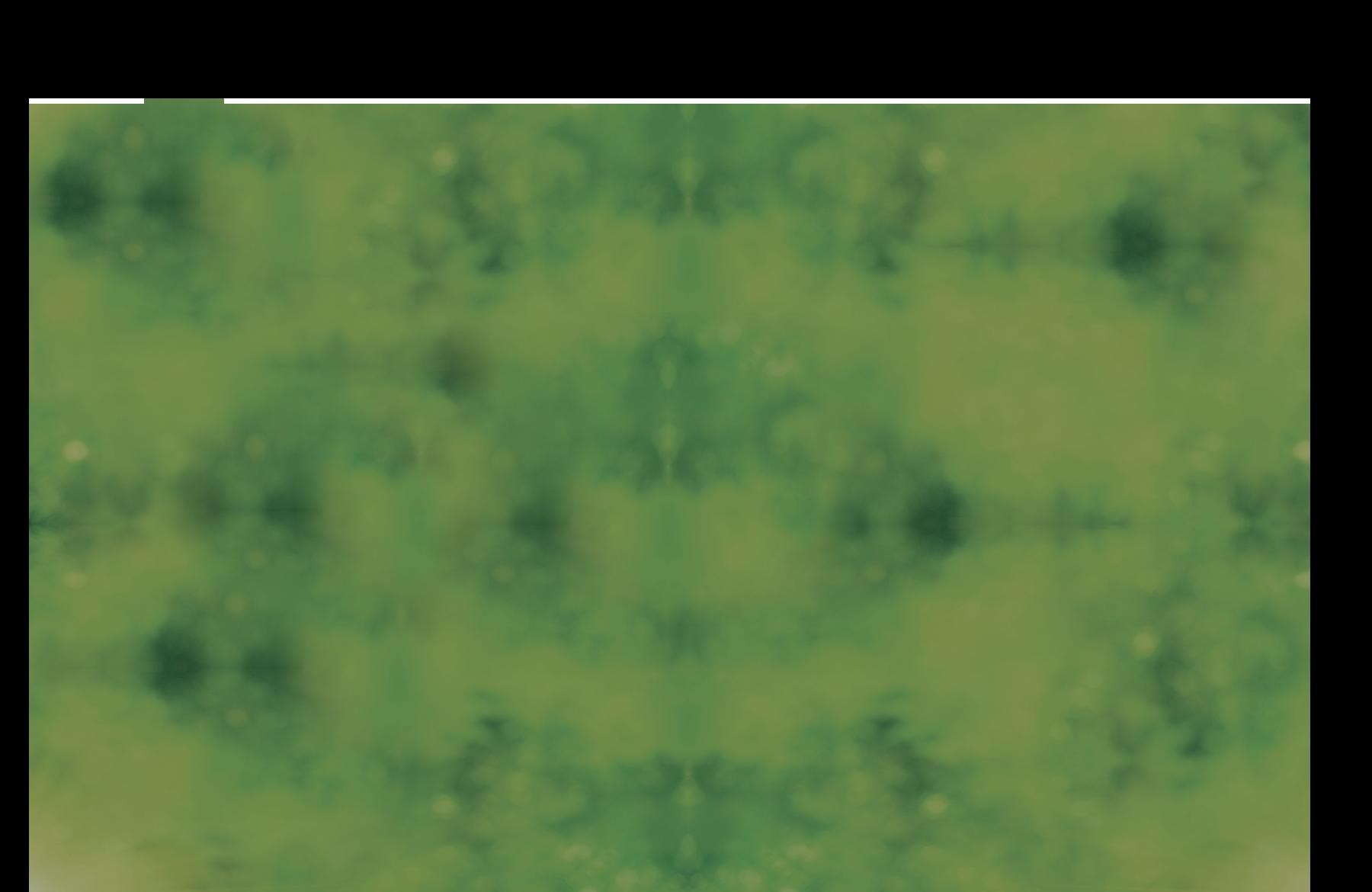 Fynimex.png