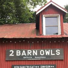 2 barn owls image.jpg