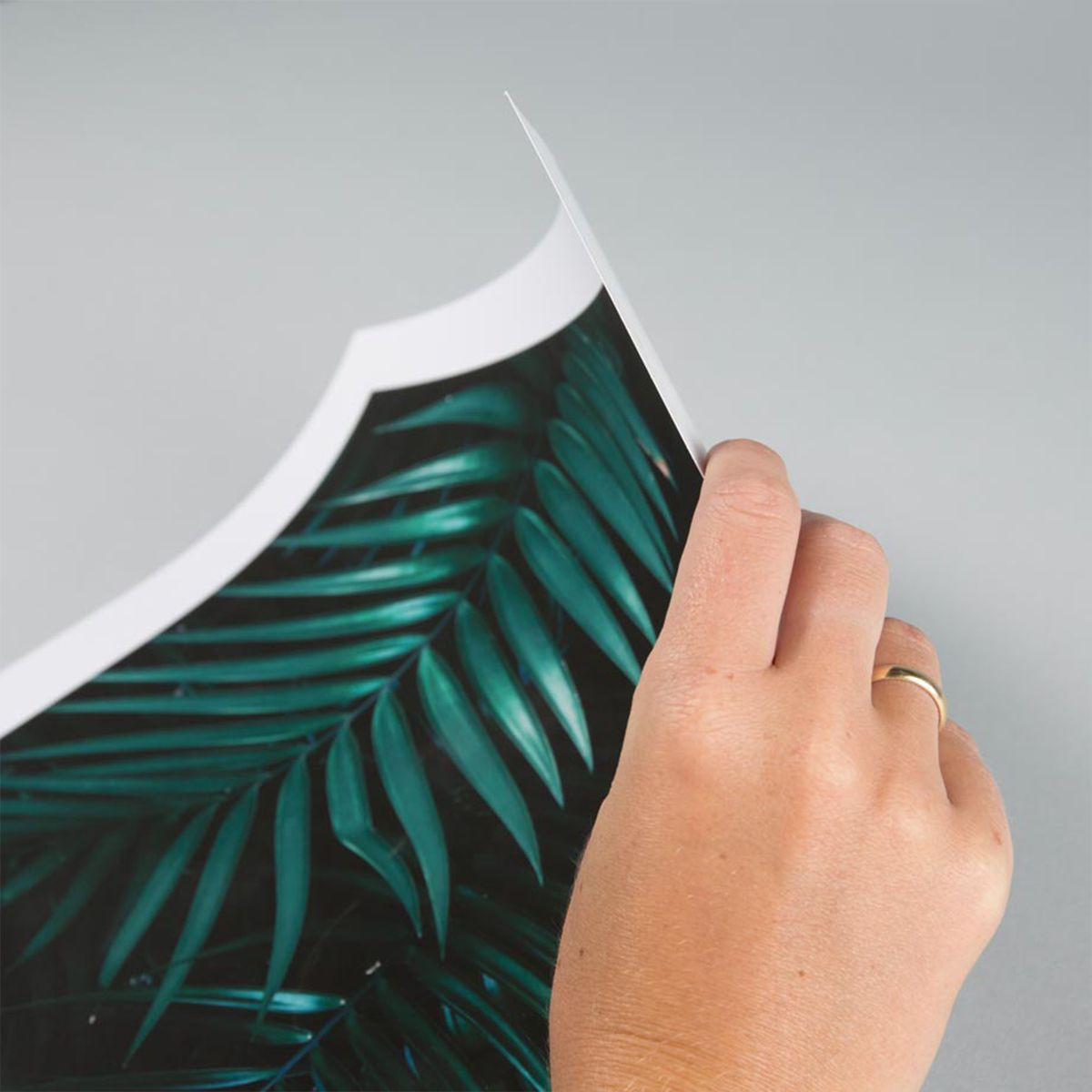 large-format-print-main04-paper-detail_2x.jpg