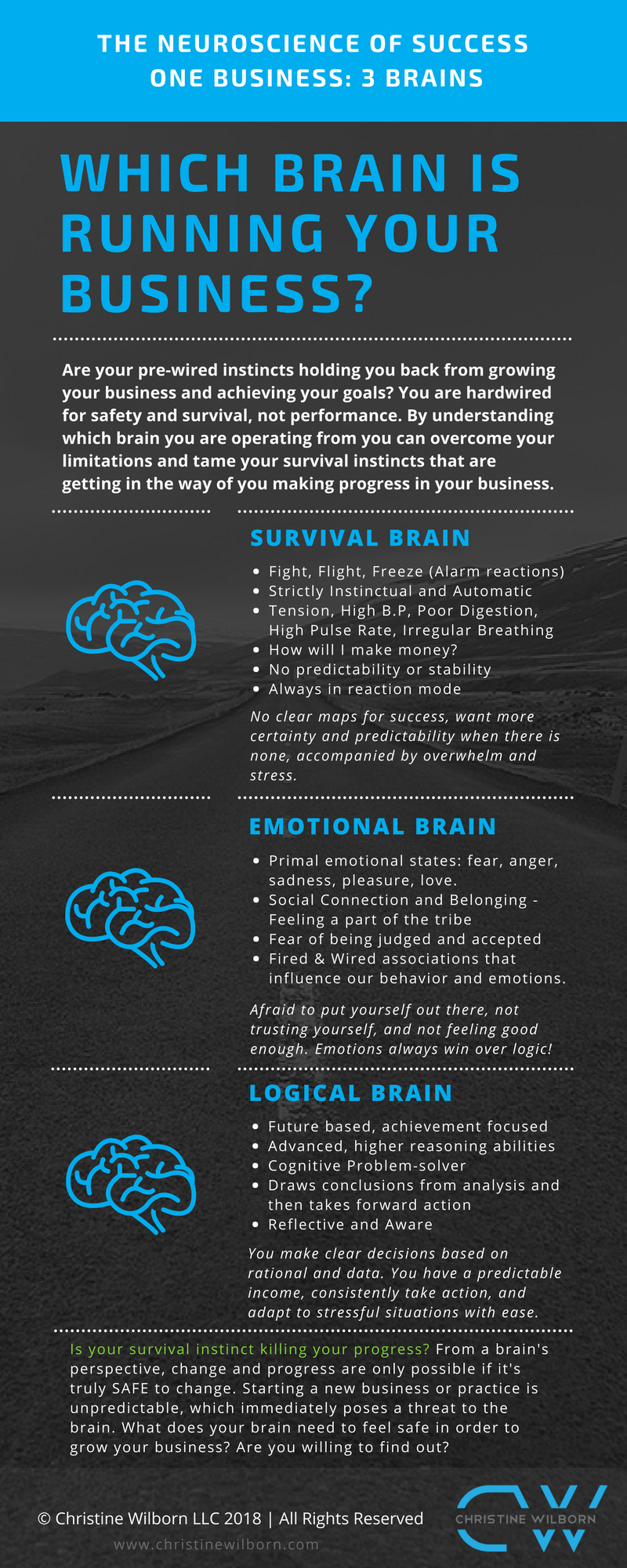 3 Brains Infograph 2018.png