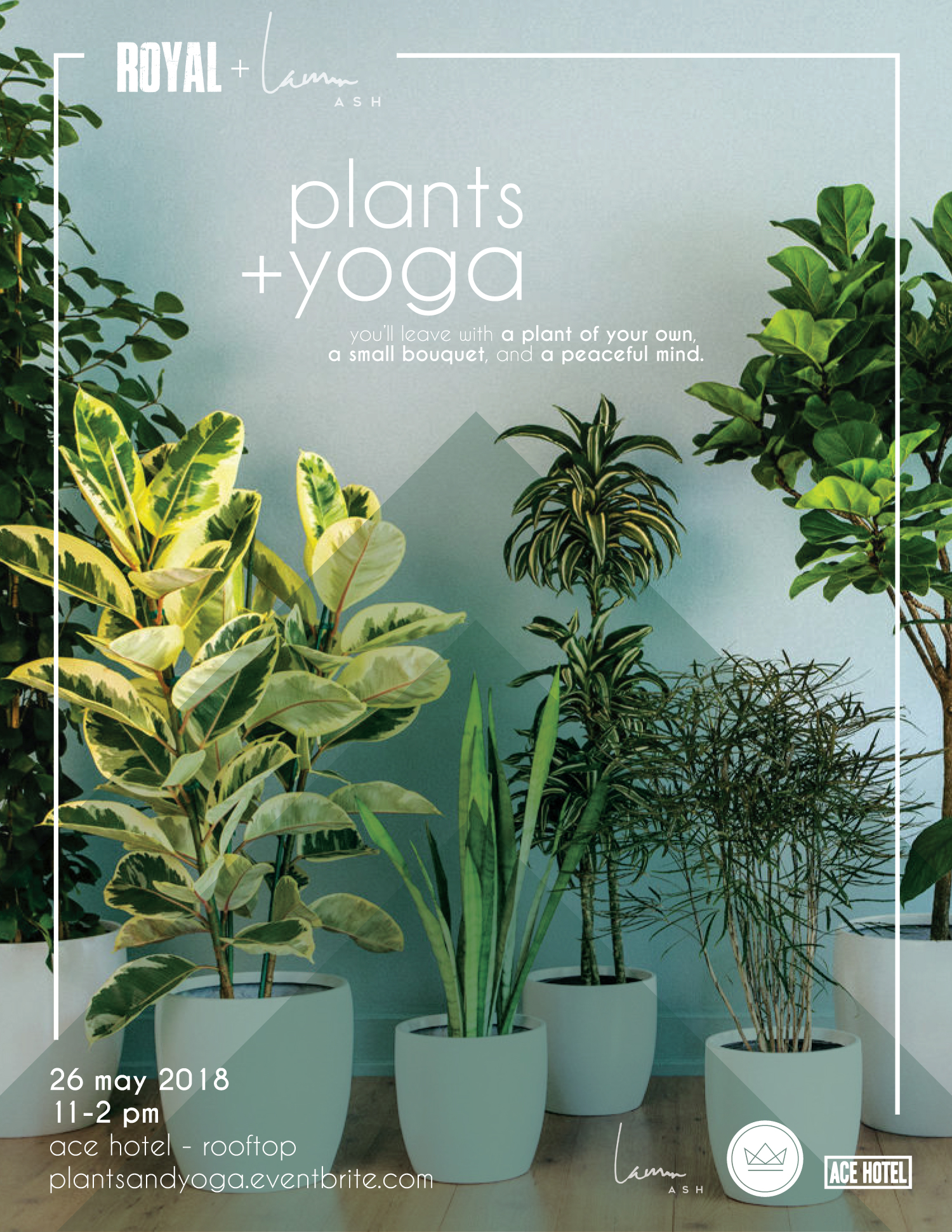 plants-and-yoga.jpg