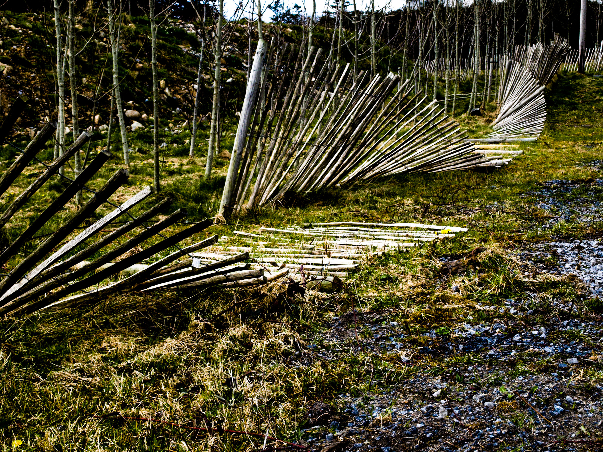 Fence_Broken.jpg