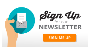 LM - Blog - Email marketing 11.png