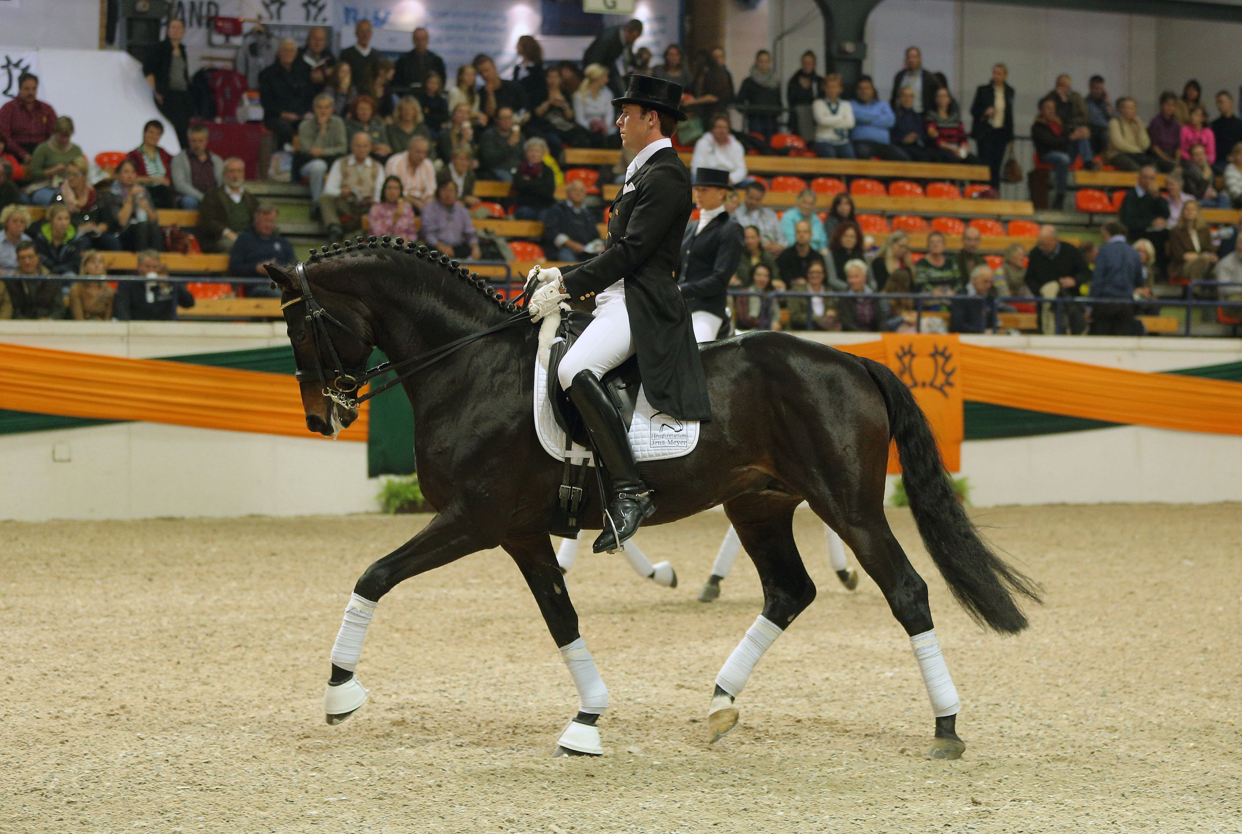 Elite Trakehner Stallion Herzensdieb, ridden by Steffen Frahm and owned by Leatherdale Farms.