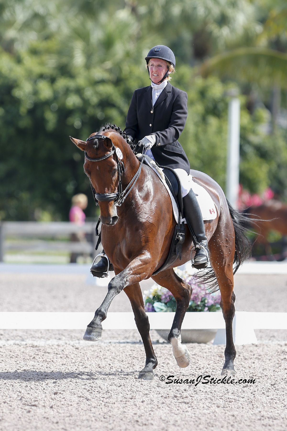 Diane Creech and Diana C at the Adequan Global Dressage Festival. Photo by Susan Stickle.