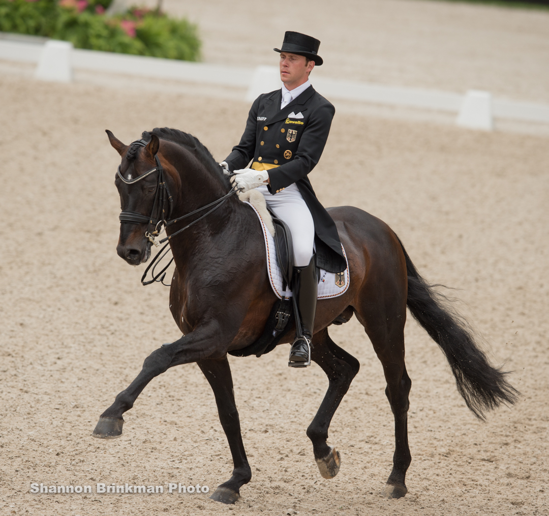 Damsey FRH with rider Steffen Frahm at the Rotterdam Nations Cup CDIO5. Photo by Shannon Brinkman.