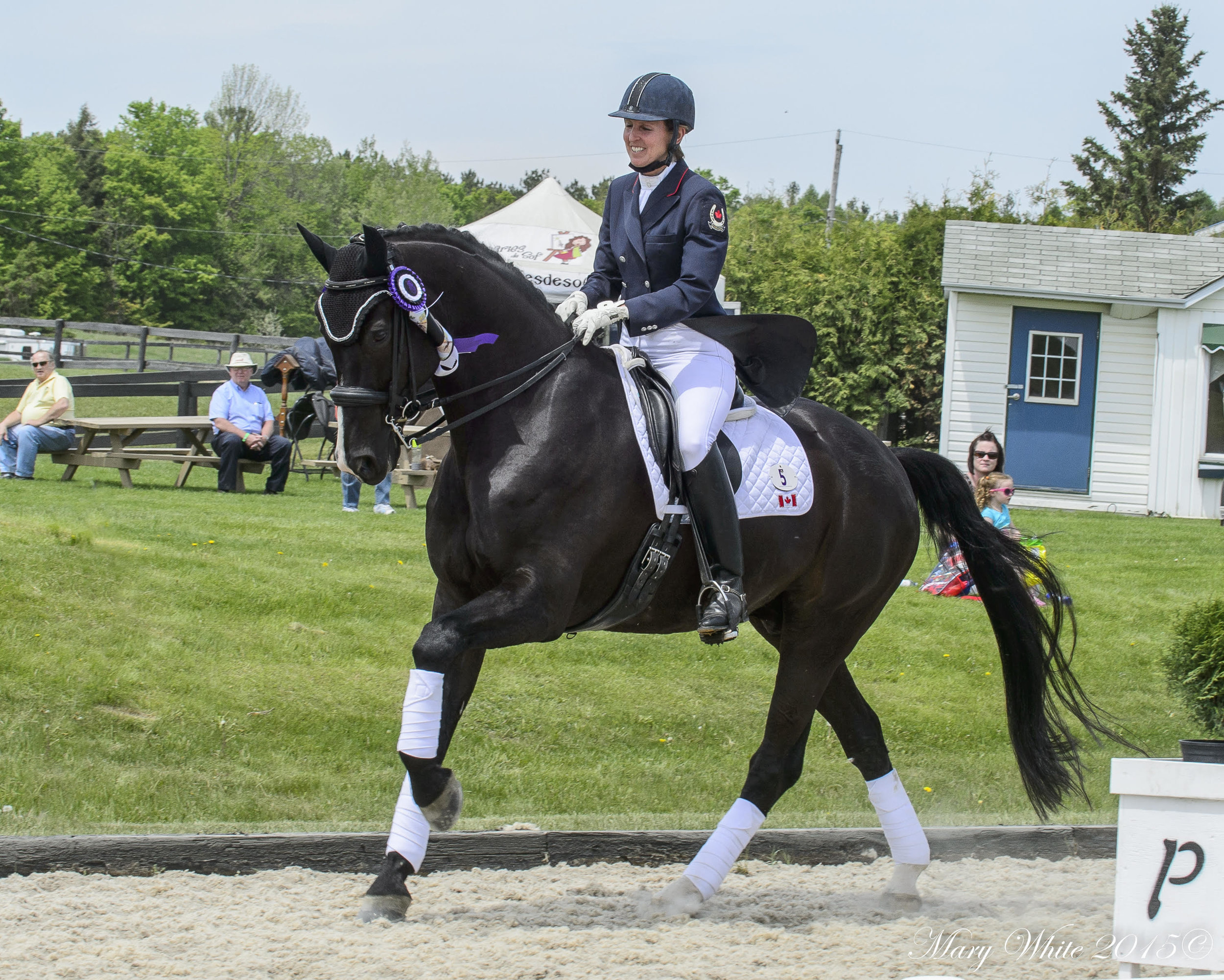 Diane Creech and Hallmark. Photo by Lone Oak Equestrian Photography.