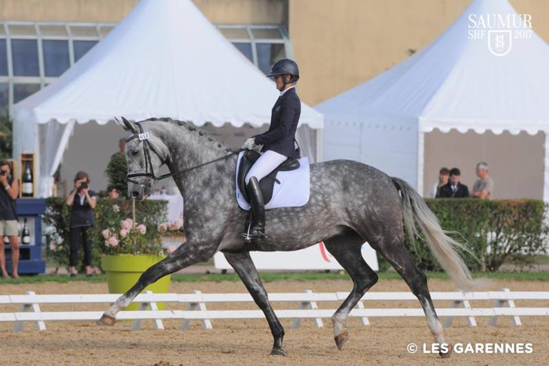 Flair Royal (Fairbanks-Banyosa R, Royal Diamond)