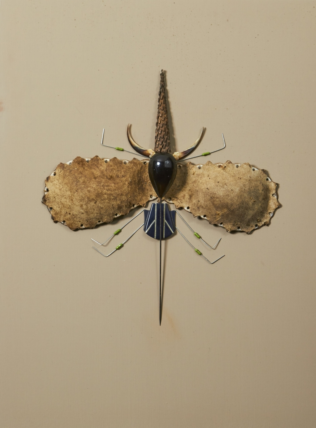 Untitled Insect