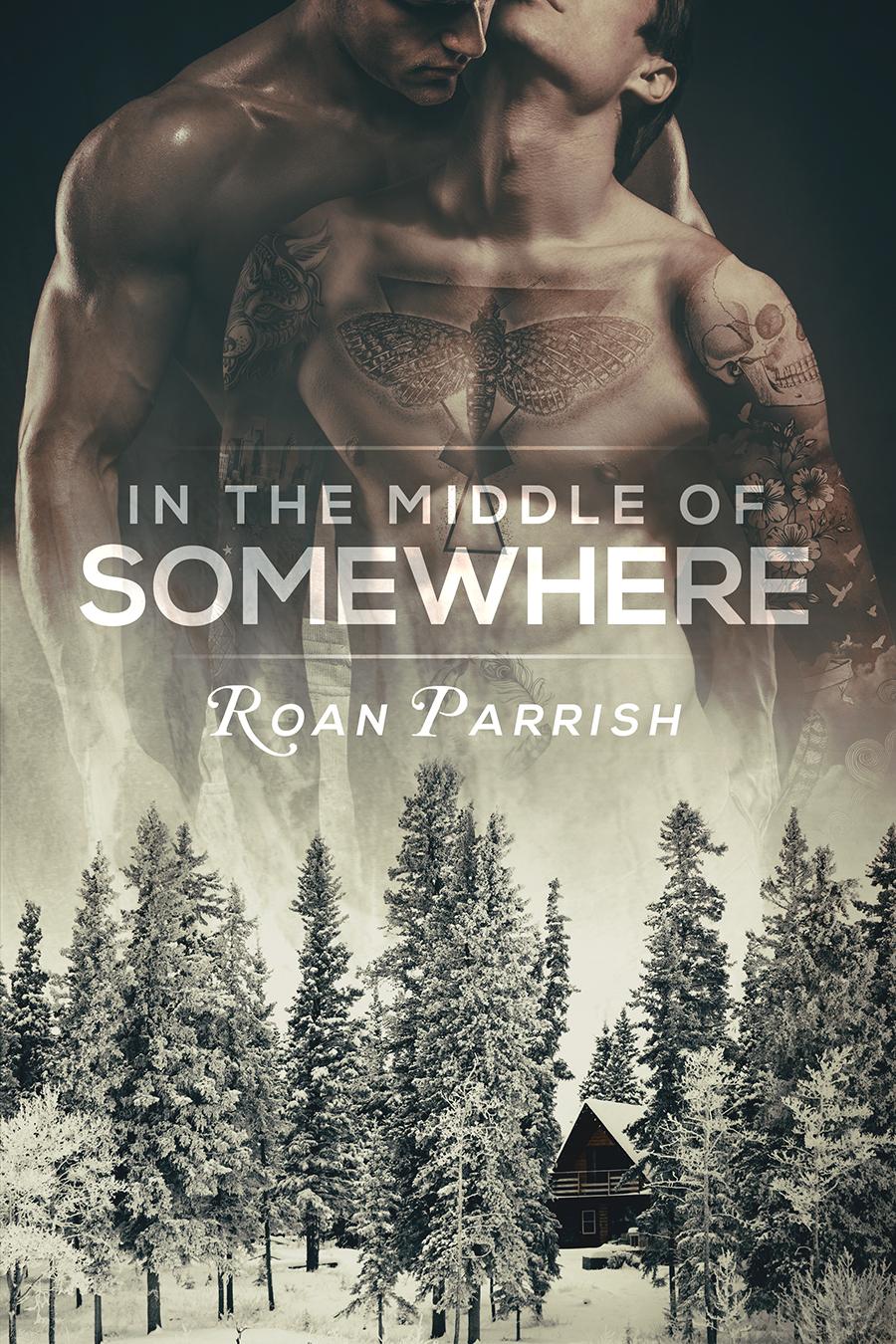 Roan Parrish, contemporary romance author
