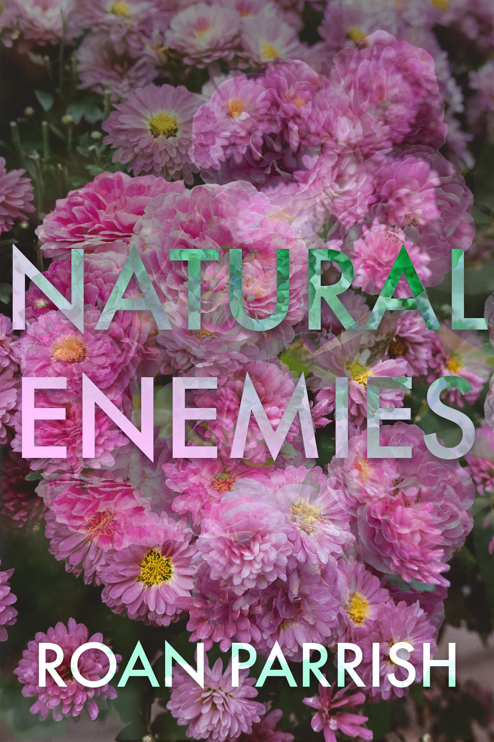 Natural Enemies Roan Parrish, author of contemporary gay romance