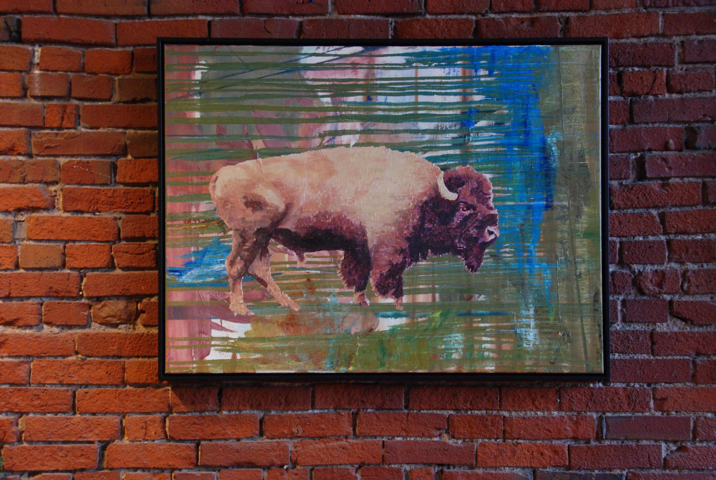 """Buffalo, 30""""x40"""" oil on canvas"""