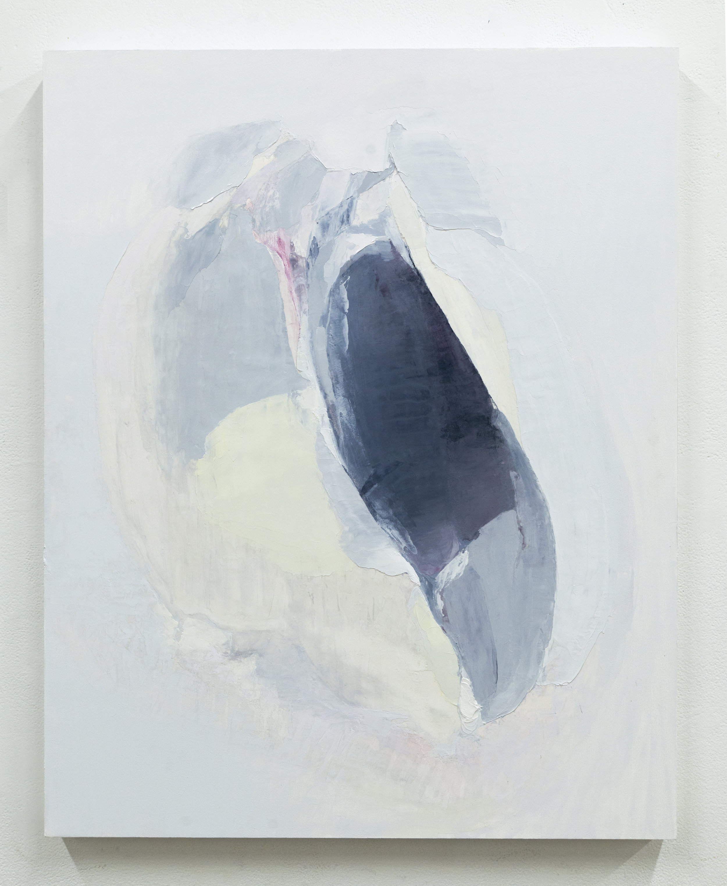Untitled (Cavity II), 2017