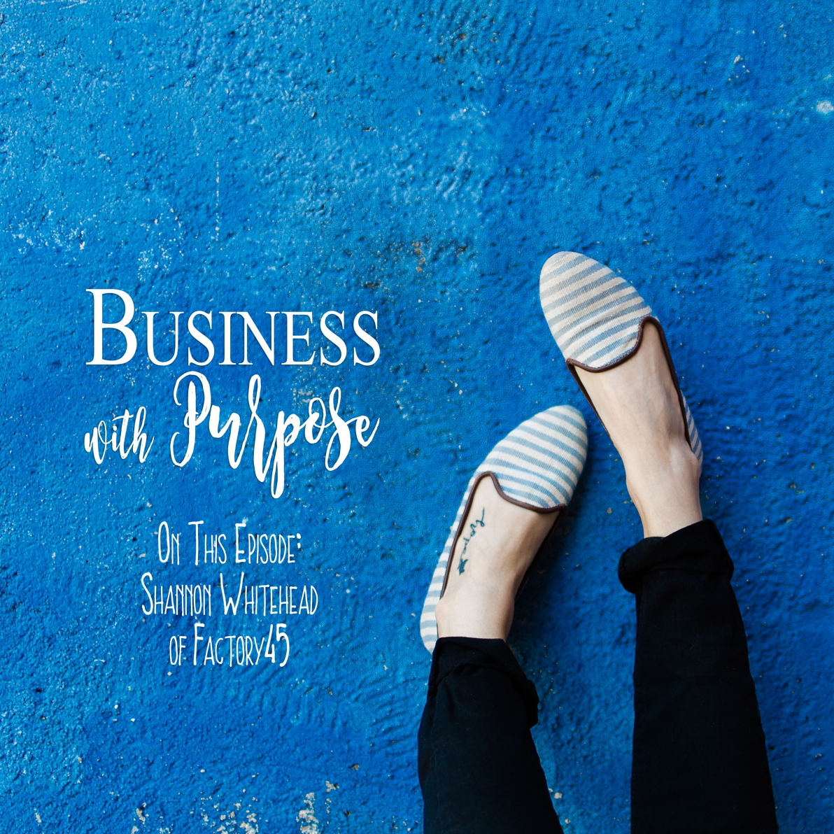 Podcasts for Sustainable Lifestyle and Business Business with Purpose.jpg