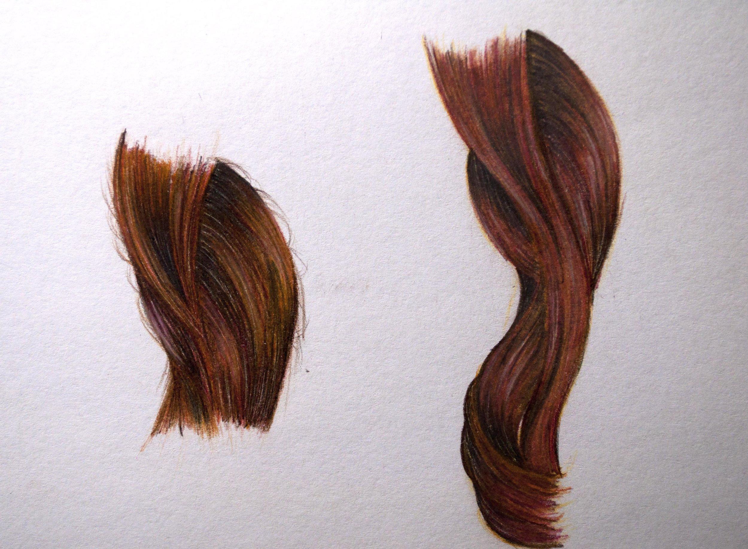 Koh-I-Noor Brown Hair Clip.jpg