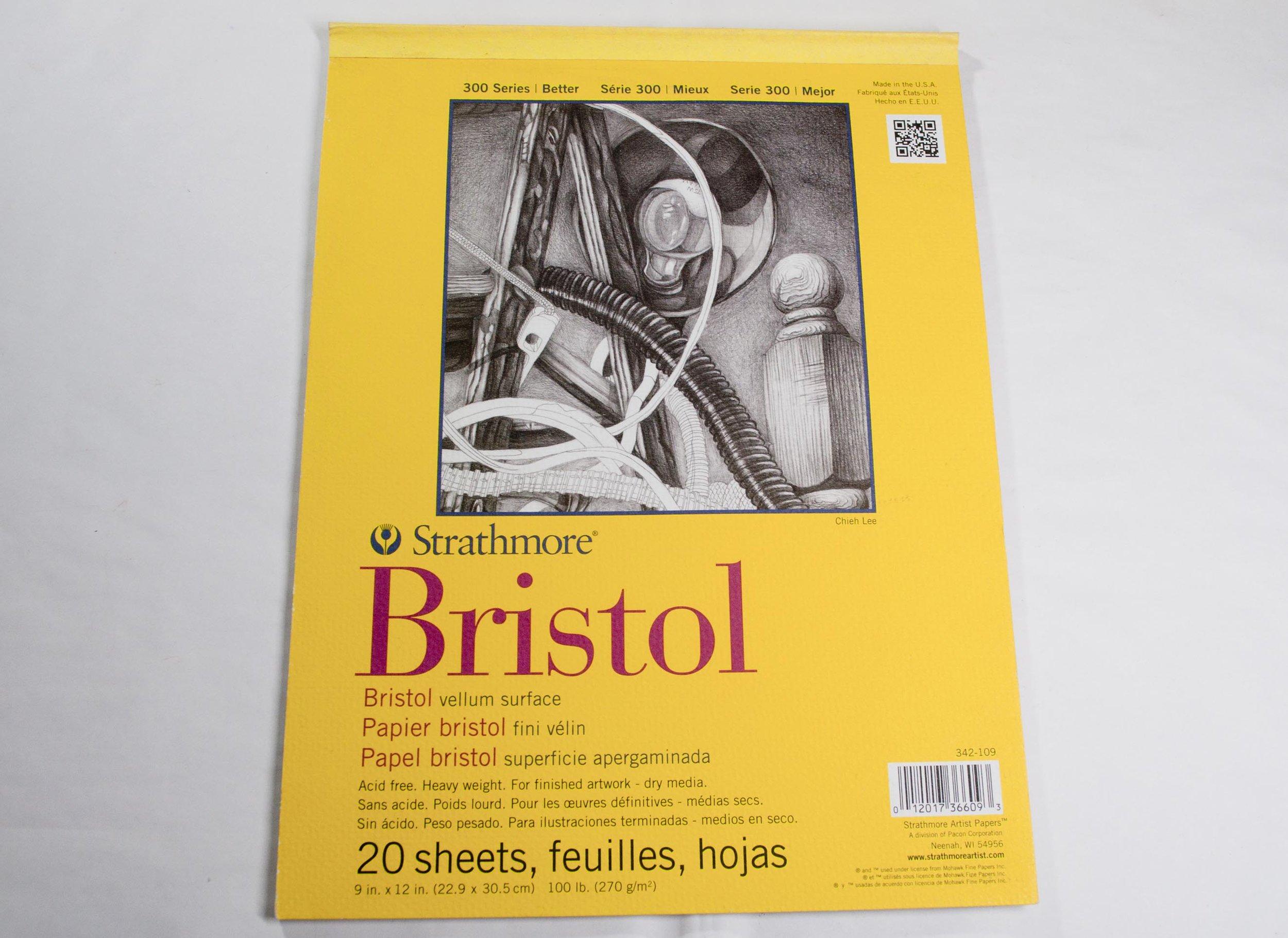 Strathmore 300 Series Bristol Velum Surface