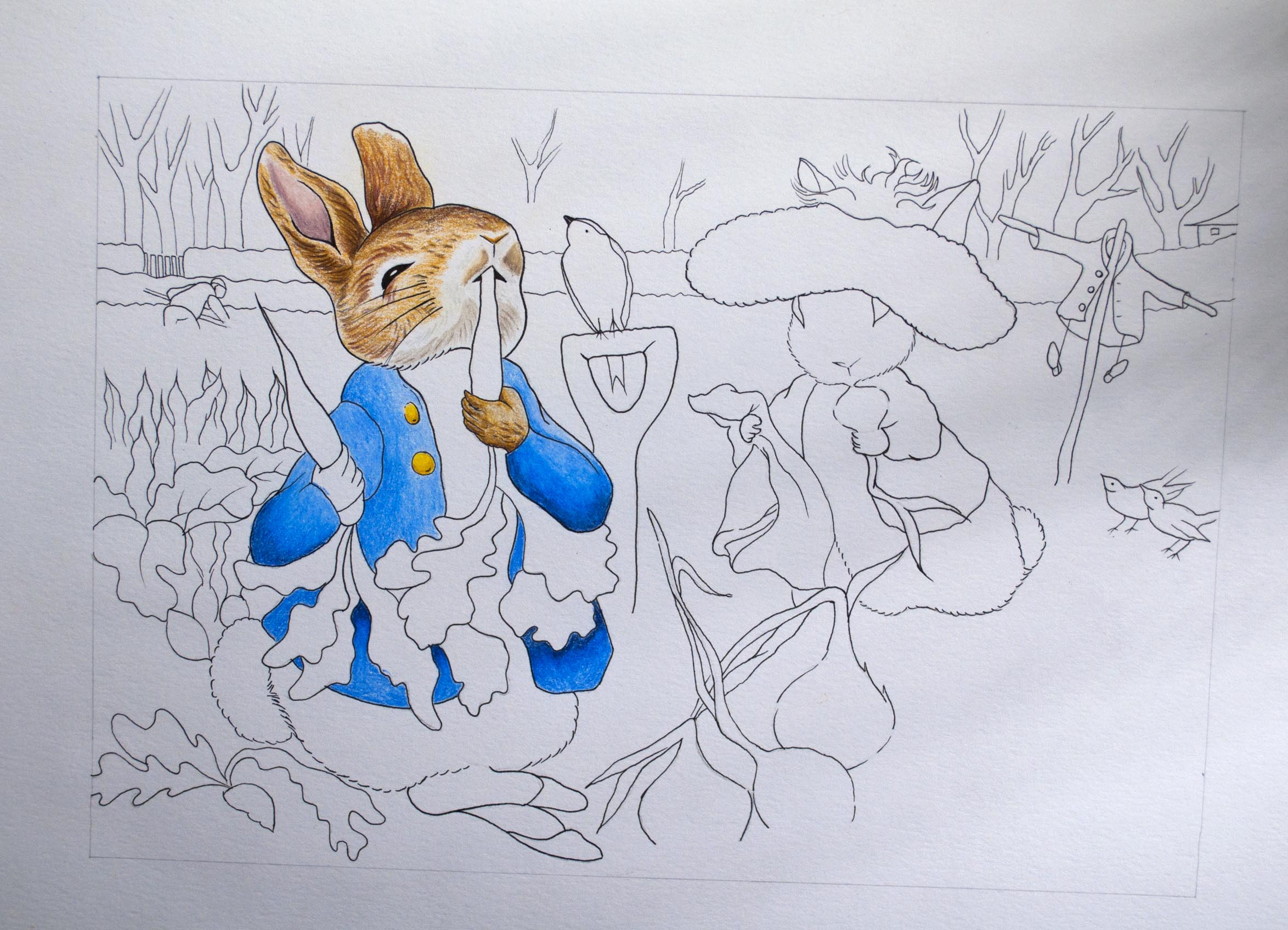 Peter Rabbit 1.jpg