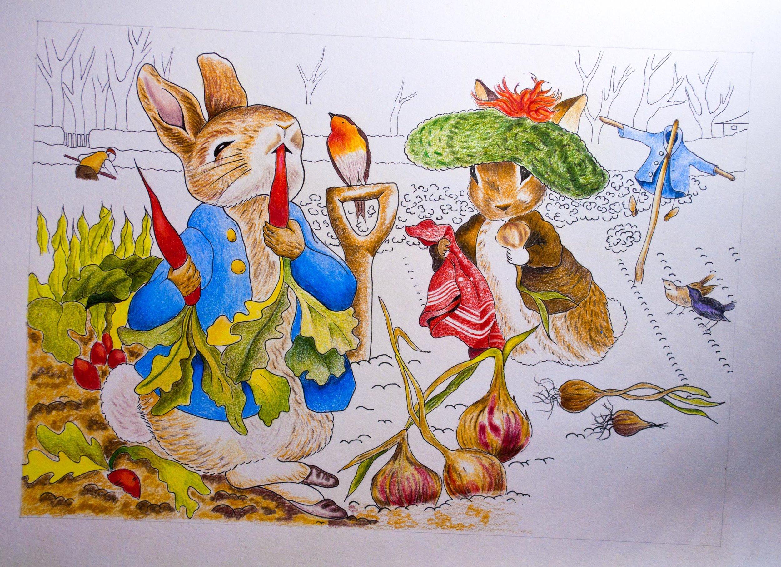 Peter Rabbit 5.jpg