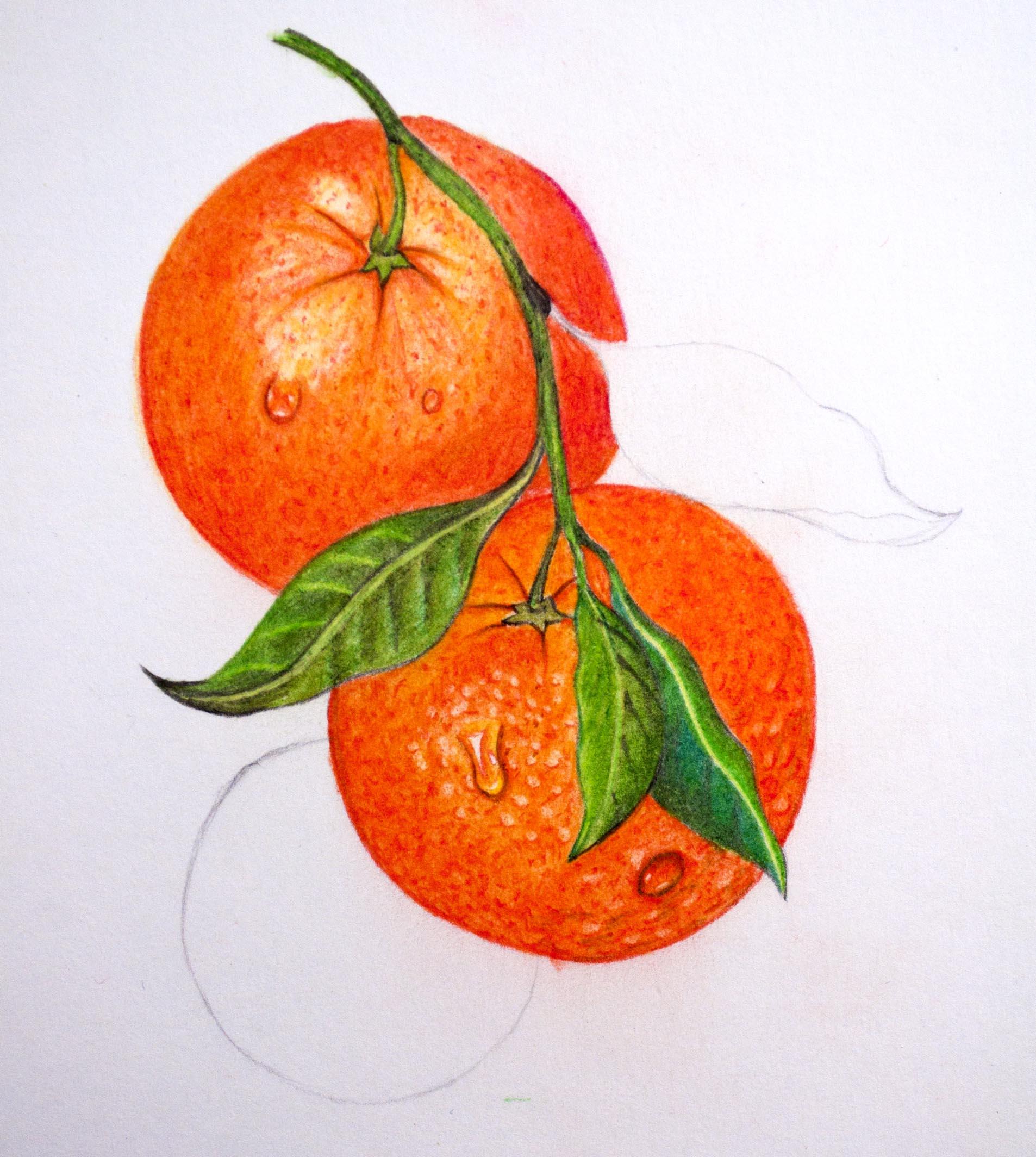 Jerrys Real Orange.jpg