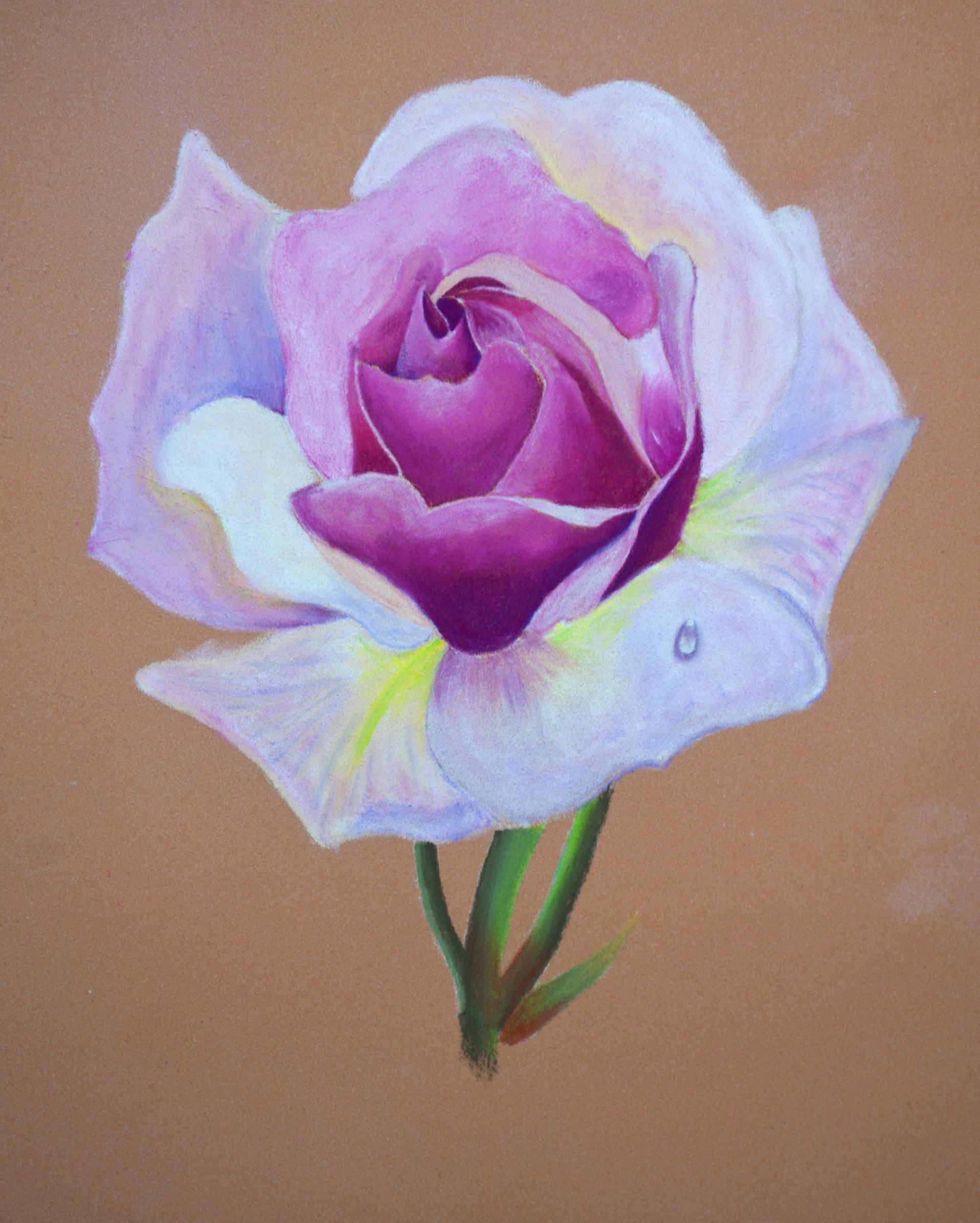 kohinorr pastel flower 5.jpg