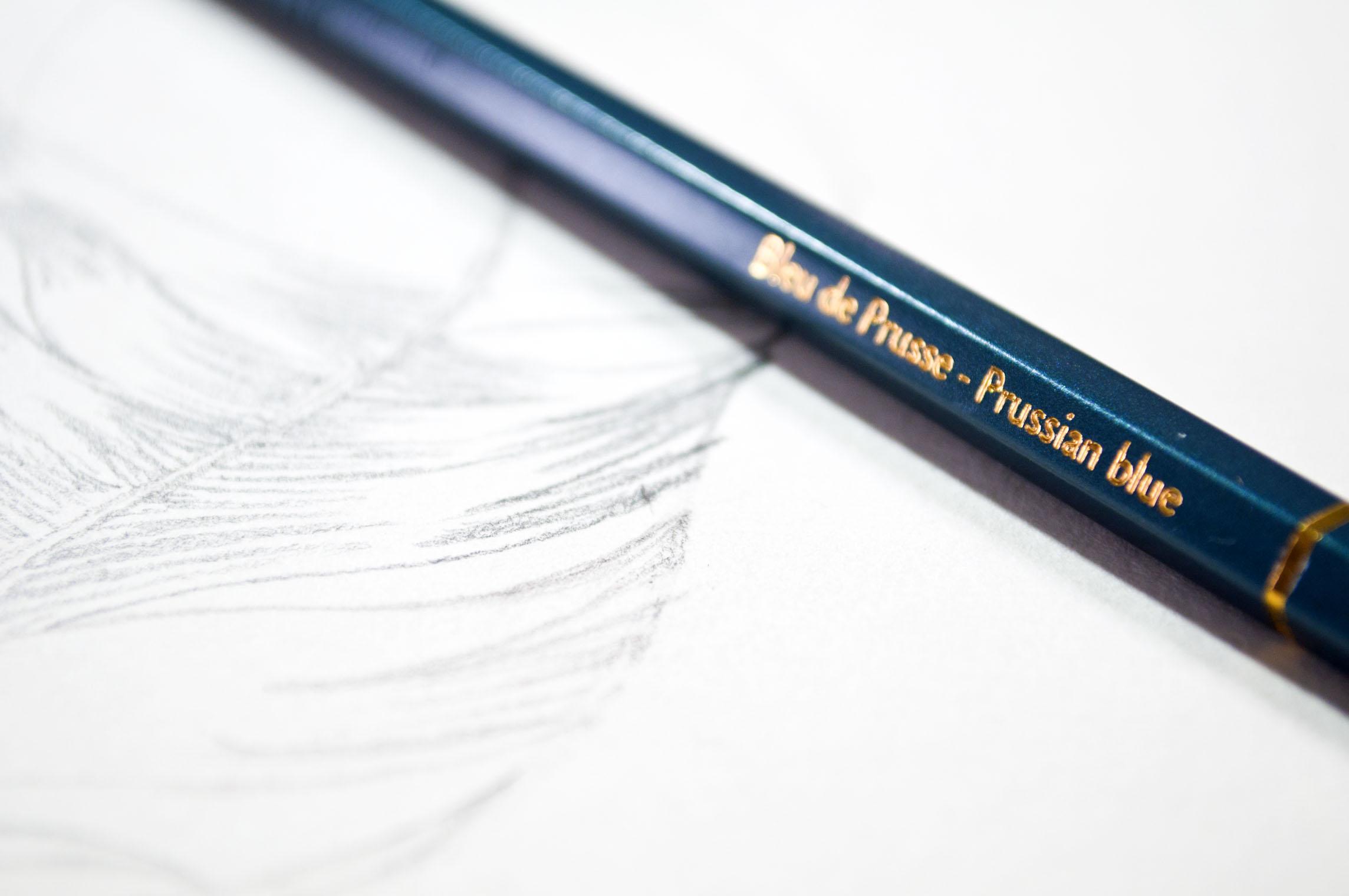 Caran DAche Feather Blue Pencil.jpg