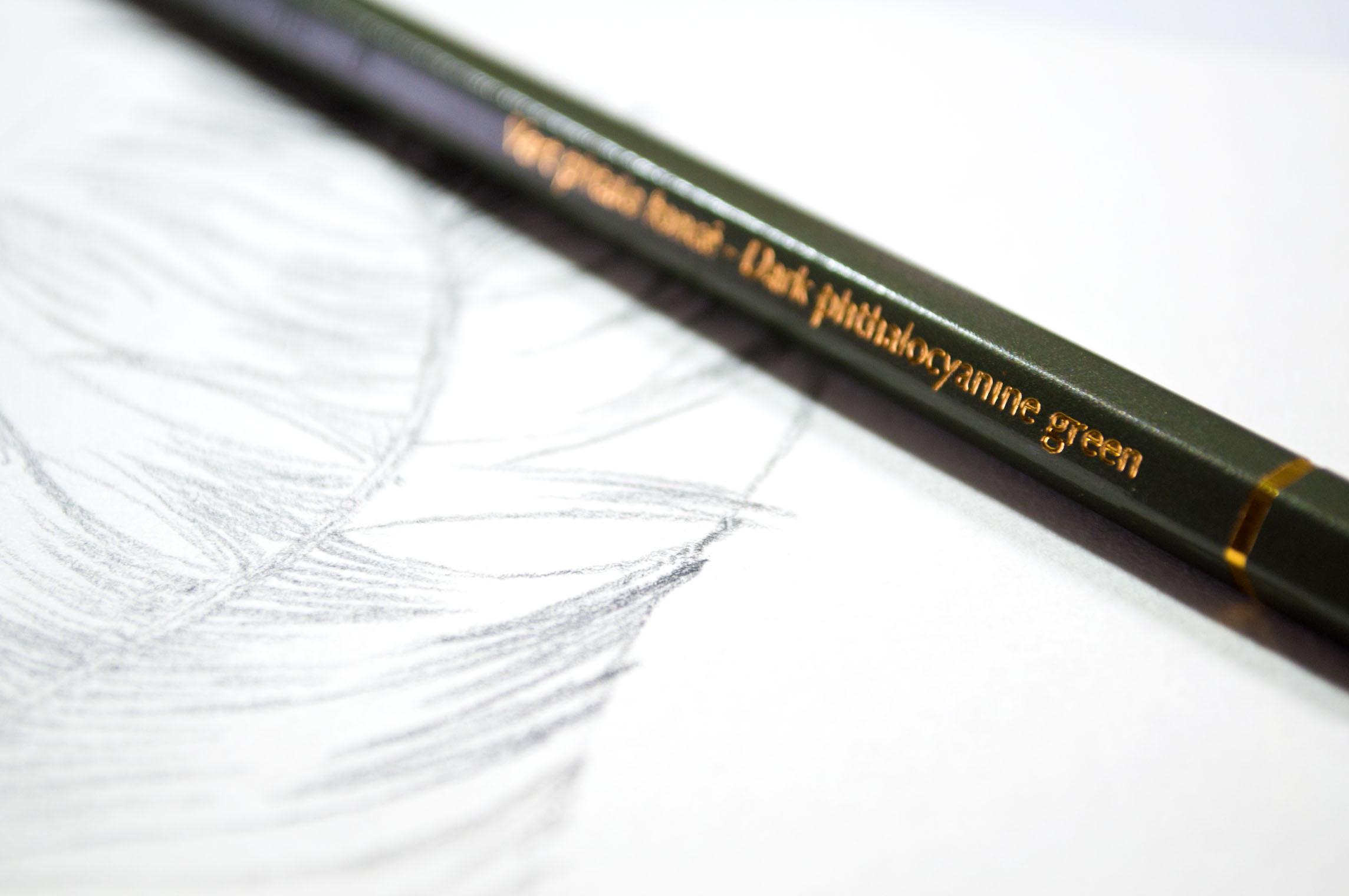 Caran Dache Feather Green Pencil.jpg