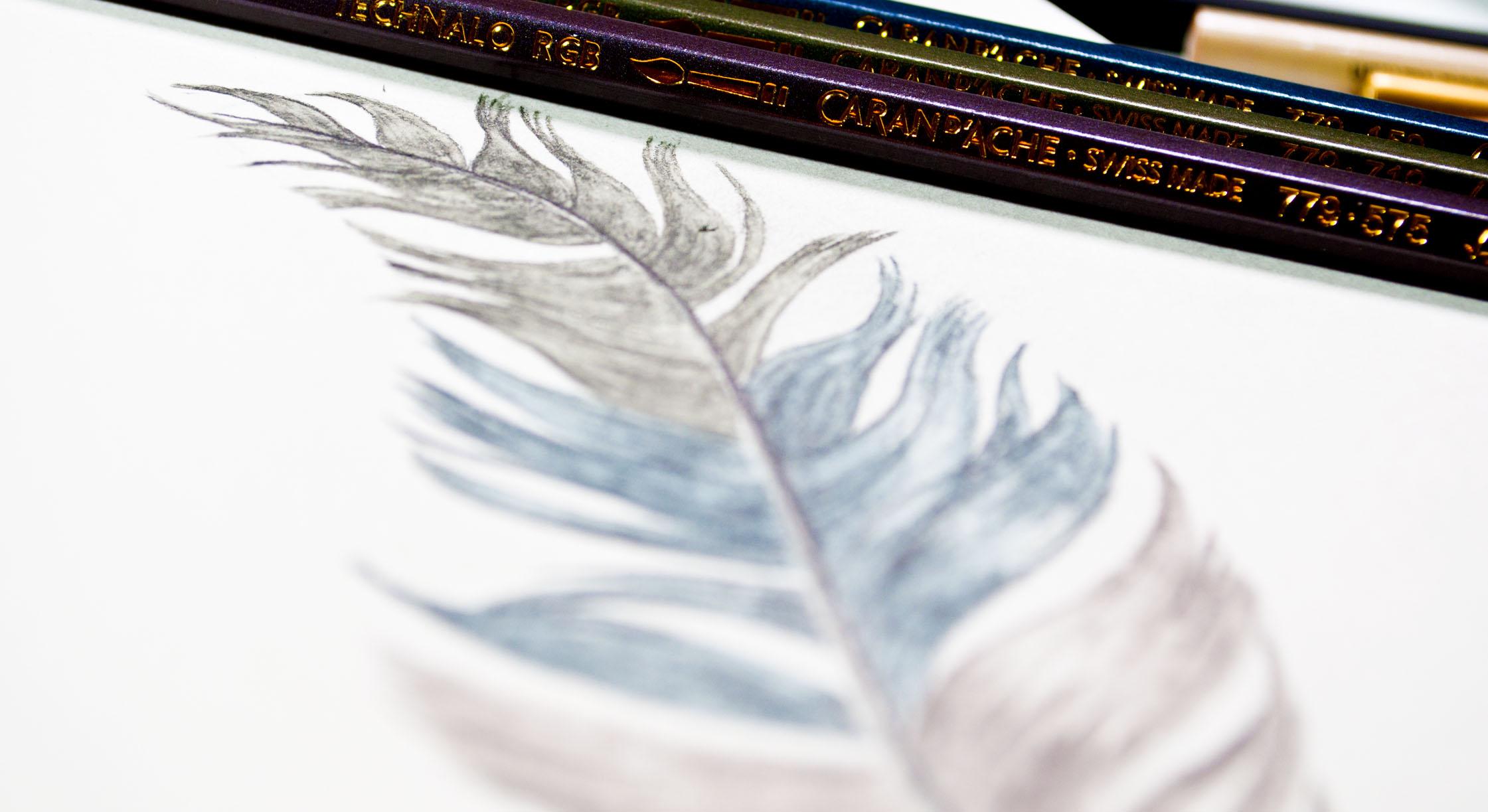Caran Dache Feather Image Designer.jpg