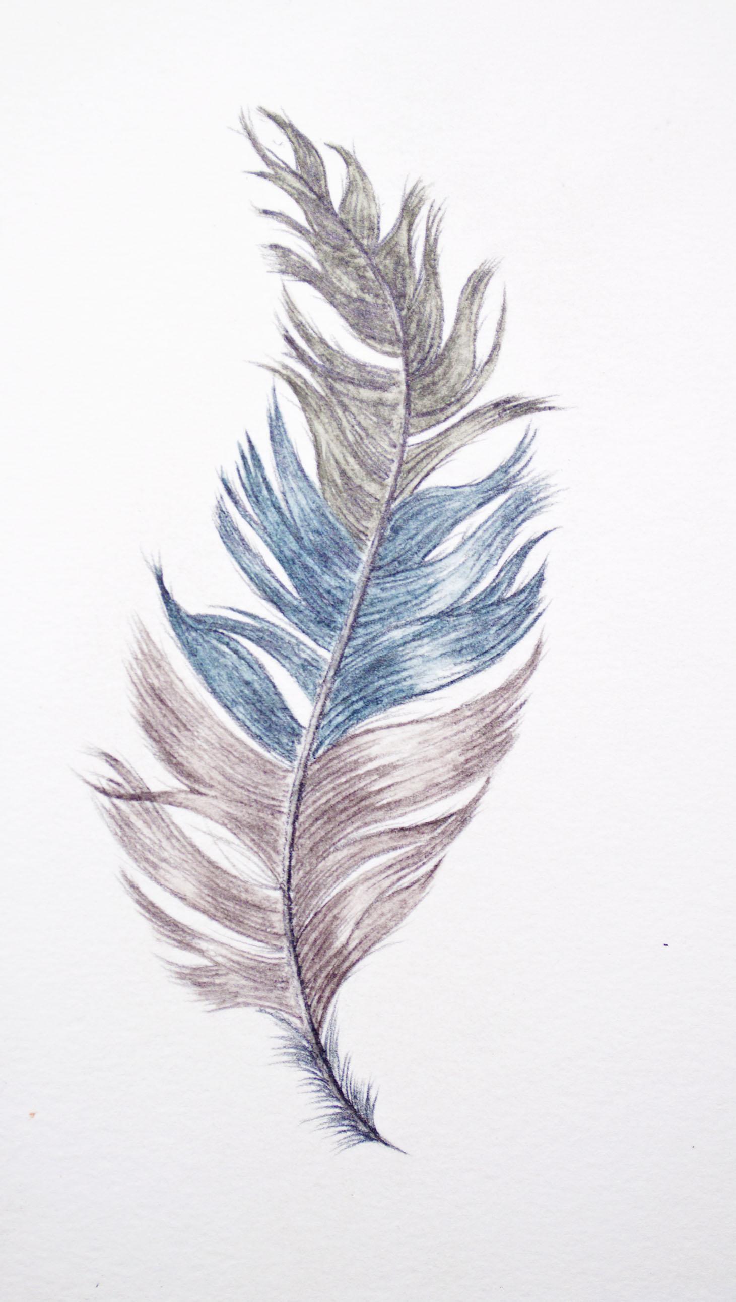 Caran Dache Final Feather .jpg