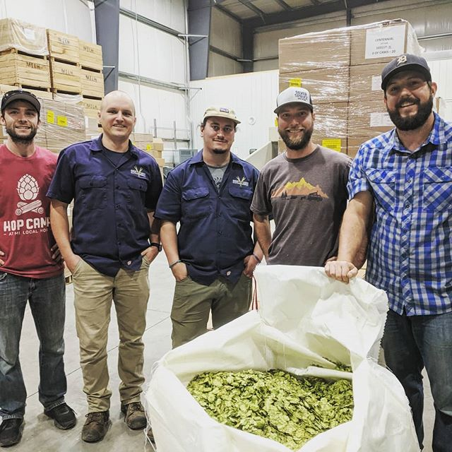 Paid a visit to our friends @milocalhops yesterday to select hops for today's brew with @silversprucebrewing. Inspired by the refreshing waters of the Great Lakes, this lager features our pilsner and Vienna malts, as well as Michigan-grown Magnum pellets and whole-leaf Tettnang hops. Cheers to Scott and Leah for showcasing the possibilities of using local ingredients!