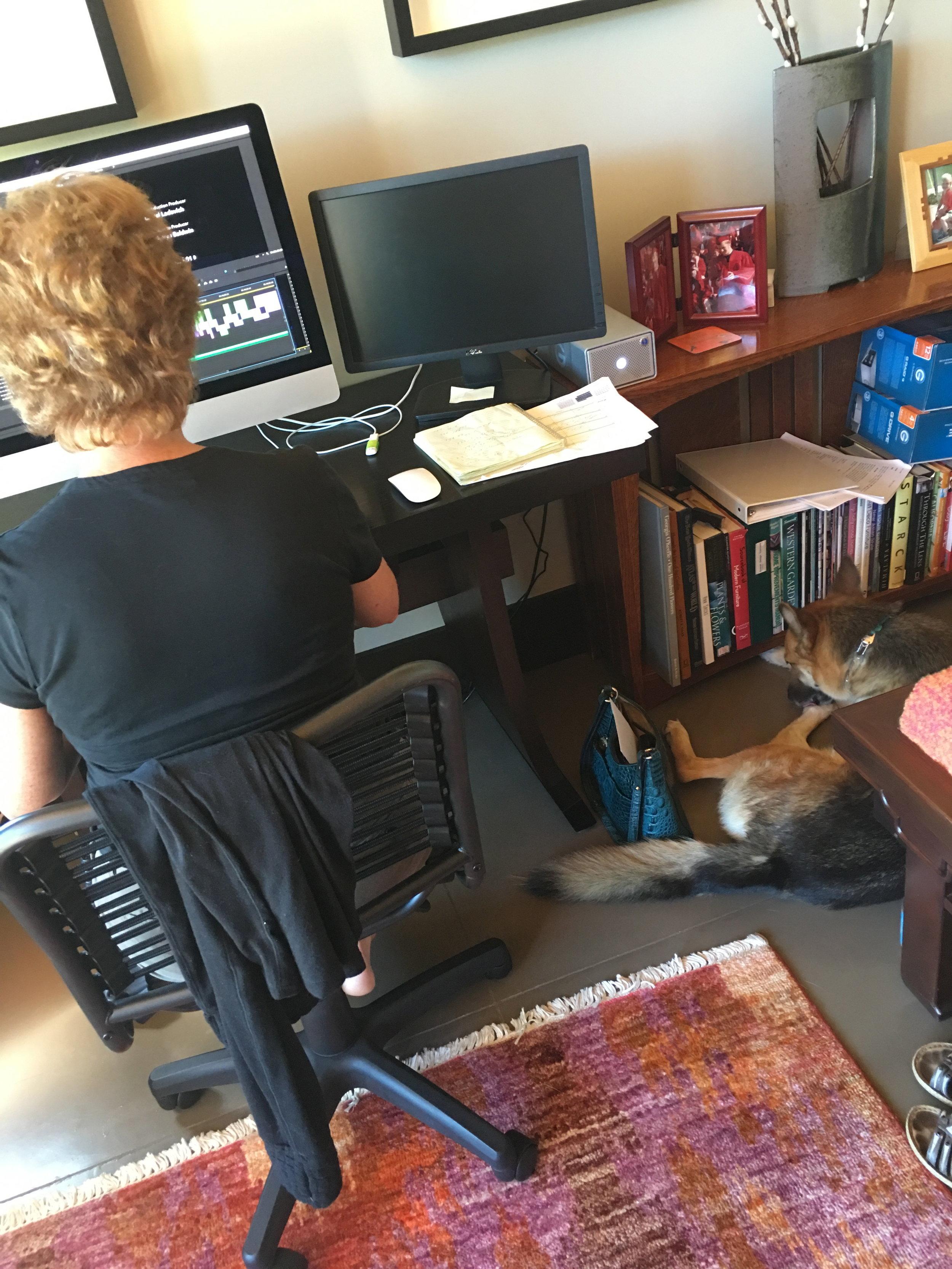 Laurel editing and Nicco napping
