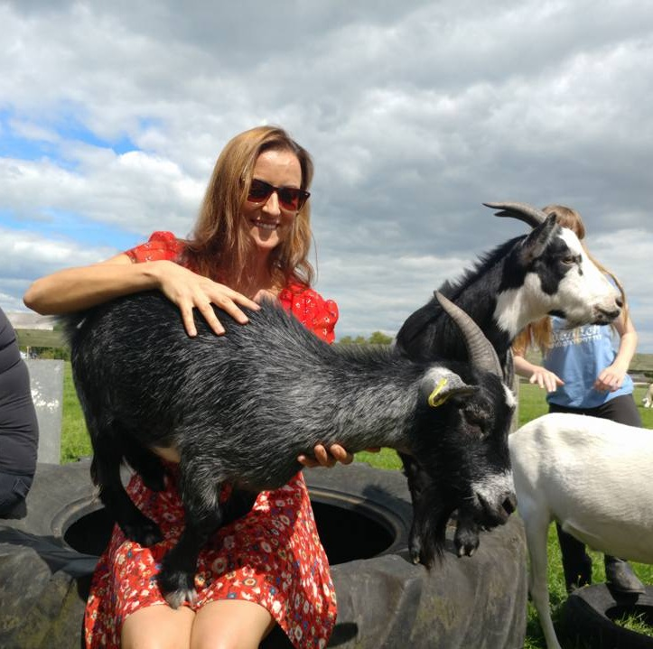 This goat, at  Goatacre Farm Sanctuary , voluntarily jumped onto my lap and I tried to play it cool.