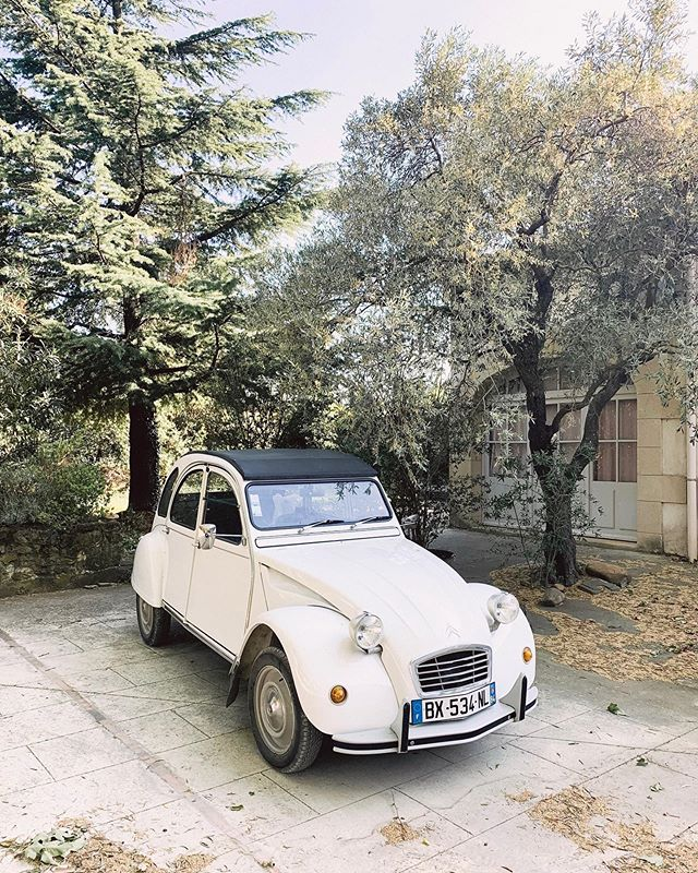 There's something about little vintage cars that really gets me 💁‍♀️This one is a French citroen, maybe from around the 1950s (just a guess). Parked outside of La Bastide St. Dominique, this little car welcomed us just before we headed into the winery for a tasting of their white and red wines. Located in the Châteauneuf-du-Pape region of Provence, France, we were right in the heart of one of the most renowned wine regions in the world. Pretty unbelievable! ⠀⠀⠀⠀⠀⠀⠀⠀⠀ I've always had a lot of questions about winemaking, considering how much wine I've enjoyed in my life 😉 It was really special to have the chance to learn more about the real art and craft of making wine. There's so much care and consideration that goes into every bottle -- it's easy to forget about when you're about to pop the cork. Thanks to @provence.ooh for an excellent guided tour -- we loved every minute! ⠀⠀⠀⠀⠀⠀⠀⠀⠀ Who else loves wine tasting 🙋‍♀️? Which wine regions have you explored throughout the world? Maybe this is starting a new trend for me... 🍷 🍷 🍷 . . . . #jenontherun #travellessons #travelersnotebook #travelnotebook #seekmoments #liveinthemoment #savorthememory #tblogger #travelblogger #travelwithme #whereiwander #tlpicks #shetravels #thattravelblog #thattravellife #transformativetravel #travelwriter #traveldeeper #traveloften #sheisnotlost #womenwhotravel #winemaking #provence #ChâteauneufduPape #BastideStDominique #winetasting #frenchwine #wineo #citroen