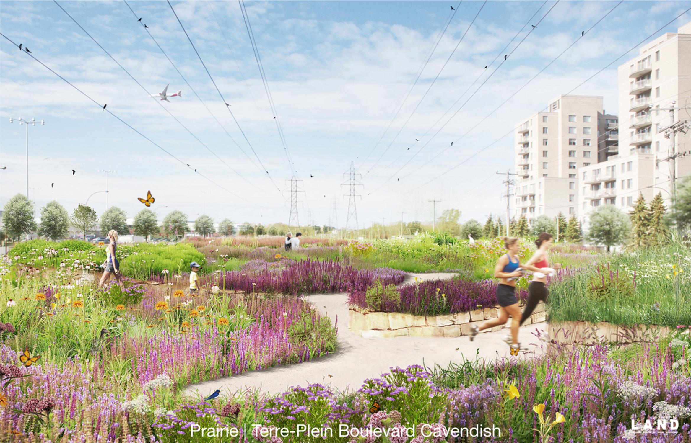 LAND_Corridor Biodiversité_Spring View.jpg